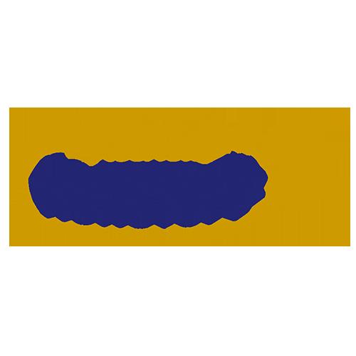 recheis-rohstoff-gmbh-logo