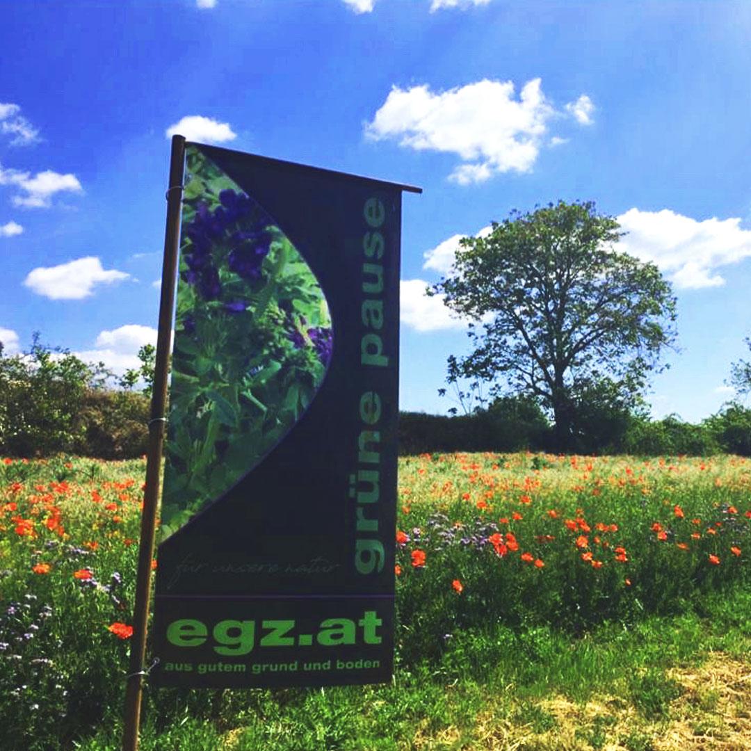 gruenepause-feld