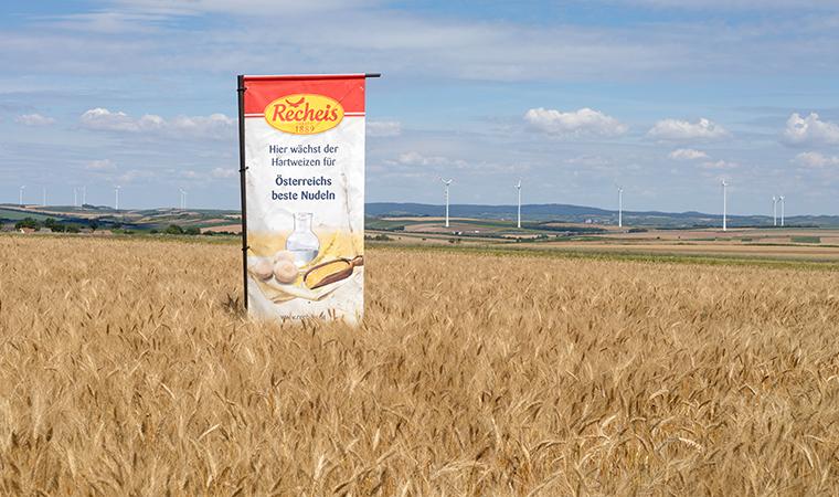 Österreichischer Getreideanbau