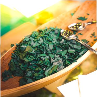 zutat-spirulina-alge