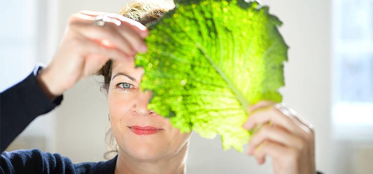 Mehr Mut und Profil für die Gastronomie – Interview mit Hanni Rützler