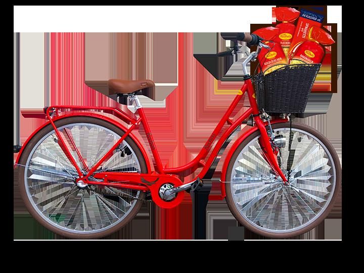 Recheis Fahrrad freigestellt_leh